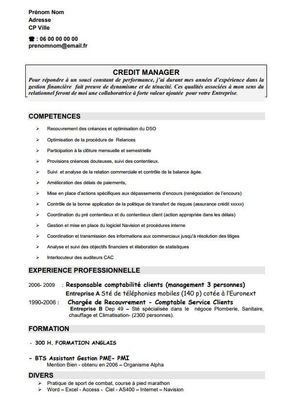 Exemple de cv domaine de compétence