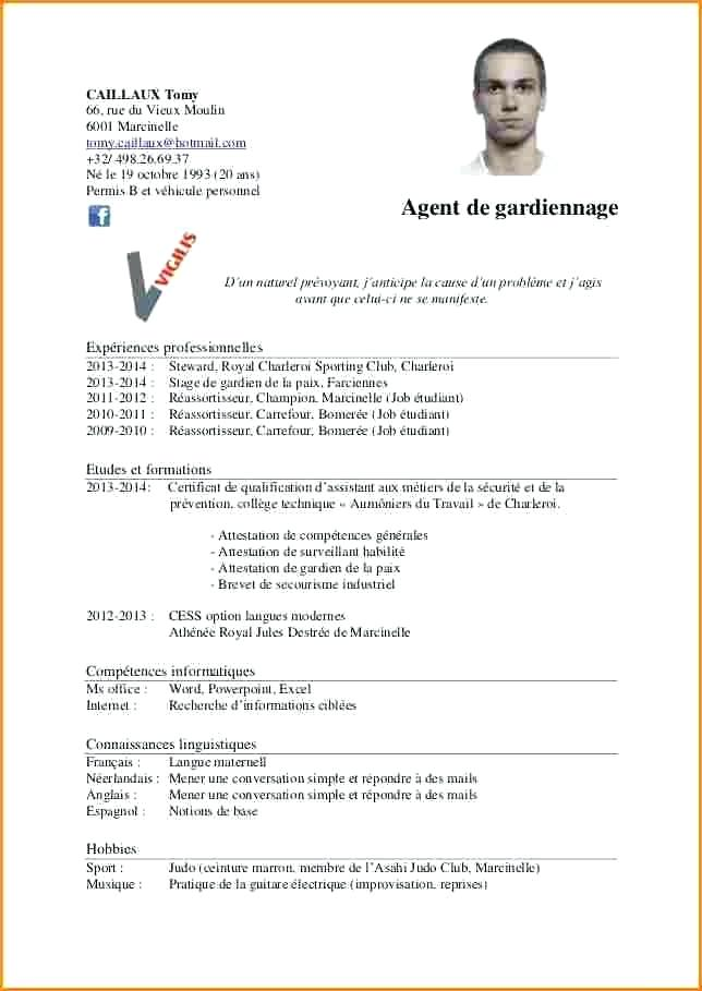 exemple d un cv agent de securite