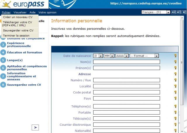 exemple de cv europass aide  u00e0 la personne