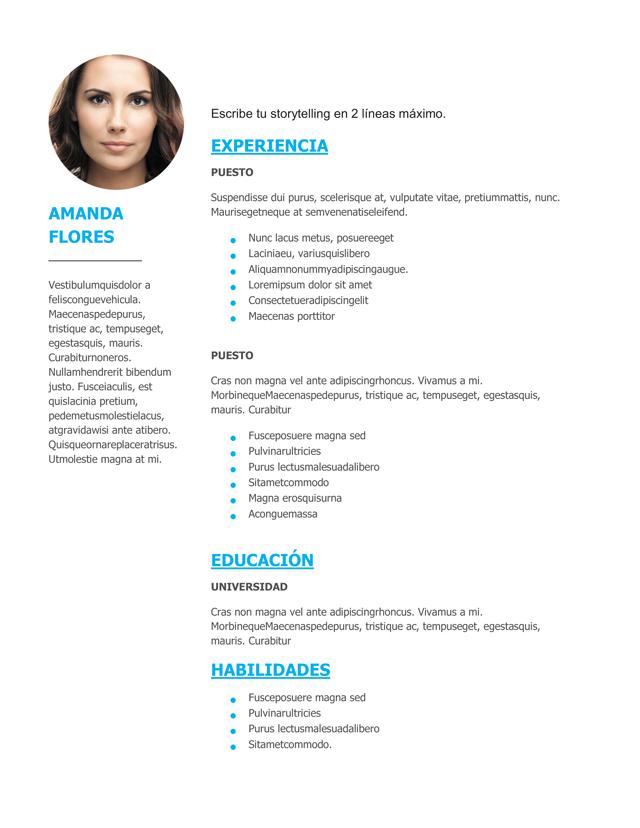 Modelos De Curriculum Vitae En Word Laboite Cv Fr