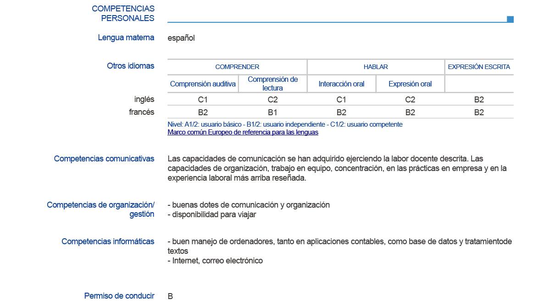 competencias informaticas curriculum vitae