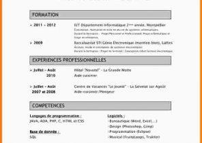 Curriculum Vitae Postdoc Laboite Cv Fr