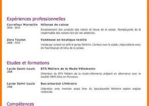 Exemple De Cv Pour Agent Hospitalier Laboite Cv Fr