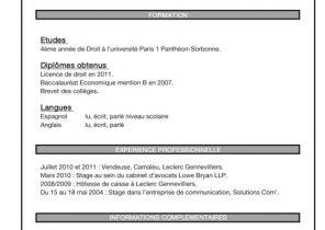 Exemple De Cv Pour Stage Bac Pro Seconde Laboite Cv Fr