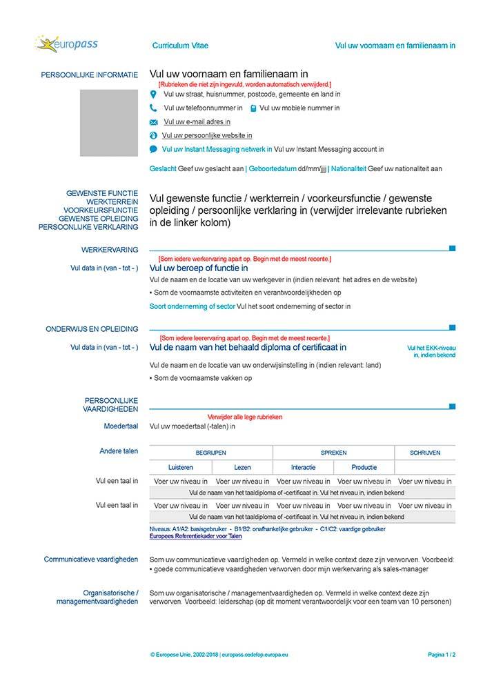 exemple de cv europass pour un premier emploi