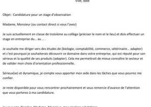Veuillez Trouver Ci Joint Mon Curriculum Vitae Et Ma Lettre De