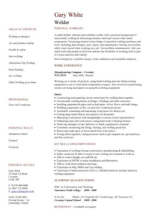 curriculum vitae description