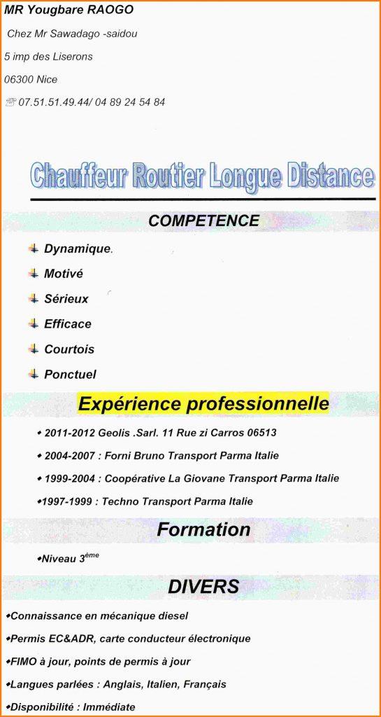 Curriculum vitae chauffeur poids lourd - laboite-cv.fr