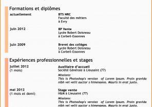 Exemple De Cv Simple Pour Stage Bac Pro Laboite Cv Fr