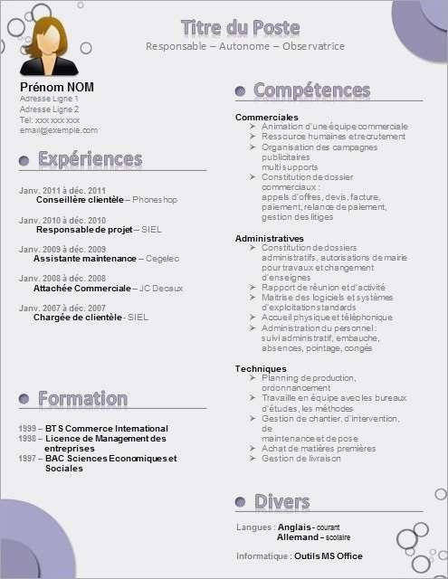 exemple de cv gestionnaire administratif
