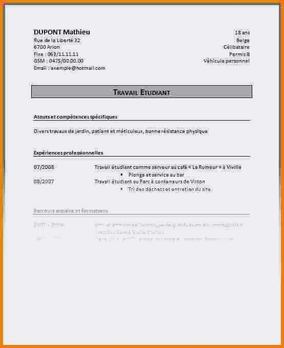 exemple de cv europass pour job d u0026 39  u00e9t u00e9 sans experience