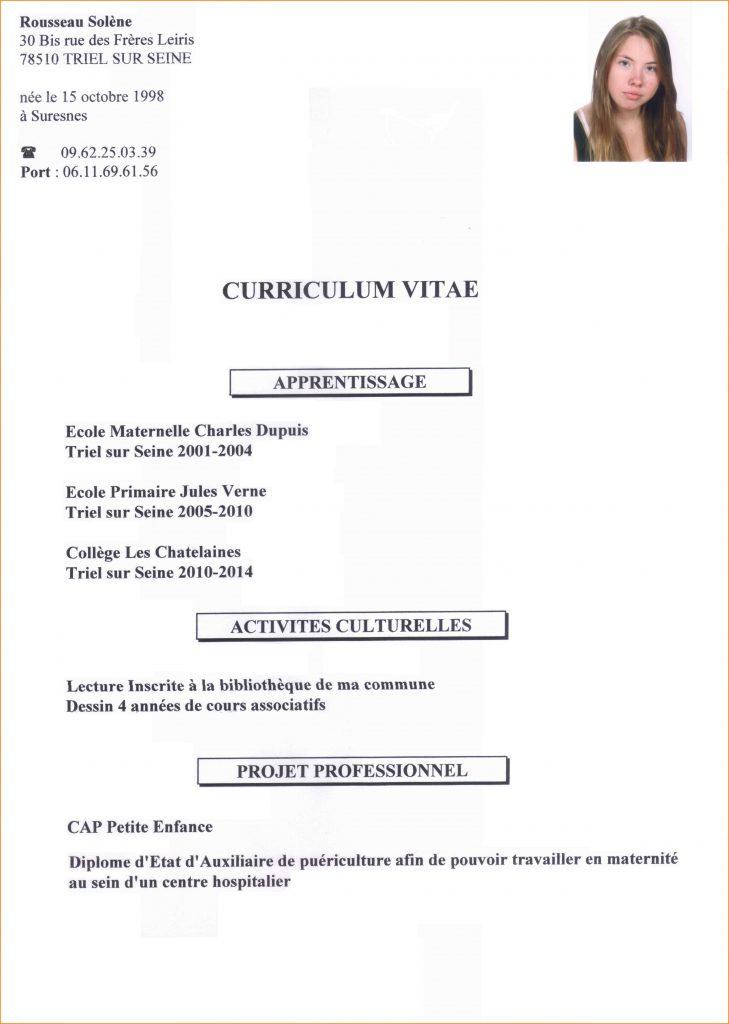 exemple de cv pour un eleve de terminale