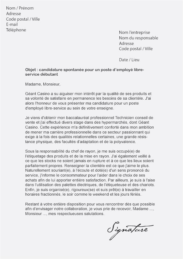 lettre de motivation pour travailler a auchan