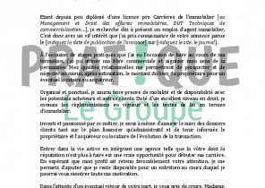 Exemple Lettre De Motivation Agent Immobilier Laboite Cv Fr