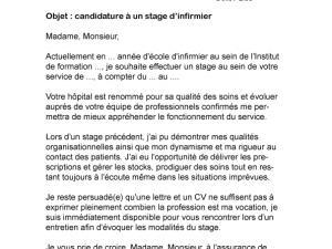 Exemple de cv pour stage infirmier