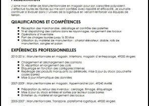 Exemple De Cv Pour Job Etudiant Word Laboite Cv Fr
