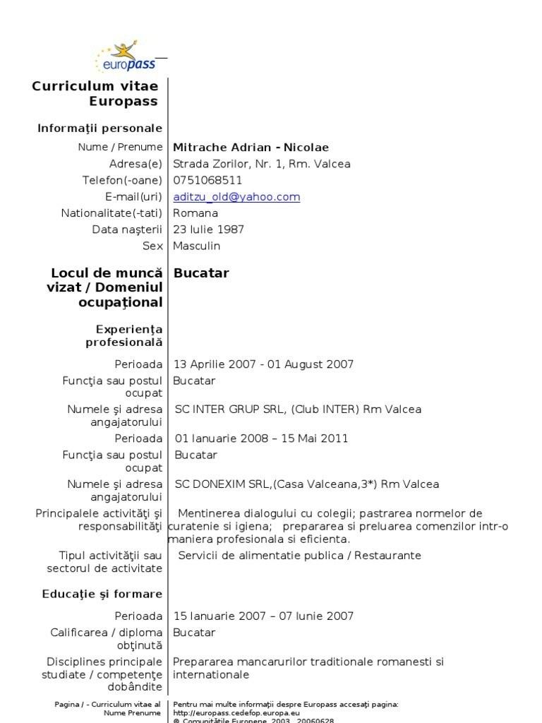 curriculum vitae romana model