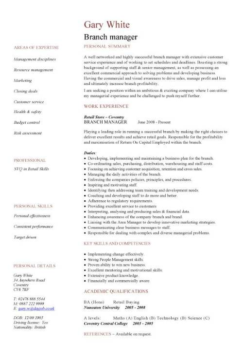 curriculum vitae commercial manager