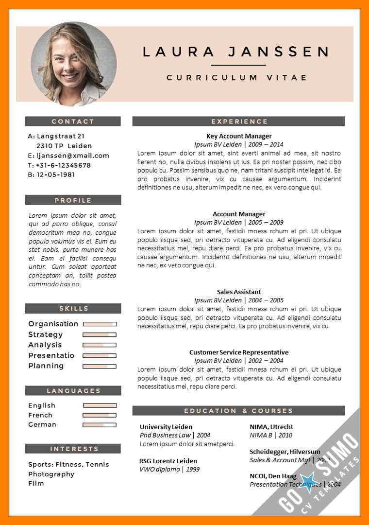 Curriculum vitae template english