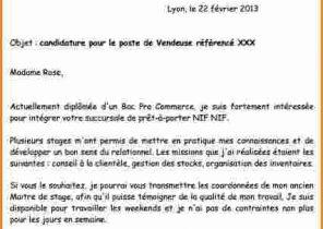 Exemple Lettre De Motivation Mmi Laboite Cv Fr