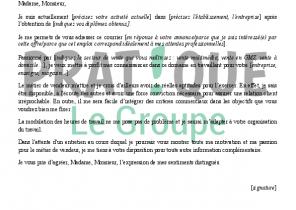 Exemple De Curriculum Vitae Auxiliaire De Puericulture Laboite Cv Fr