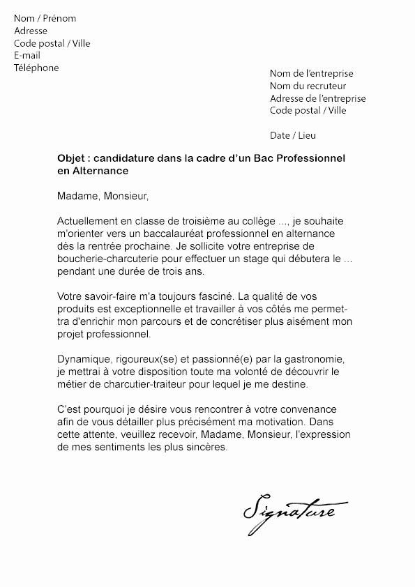 lettre de motivation master projet professionnel