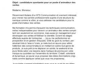 Lettre De Motivation Exemple Bafa Laboite Cv Fr