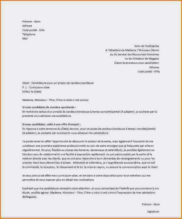 lettre de motivation vendeur polyvalent primark