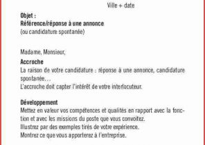 Exemple De Cv Preparateur En Pharmacie Hospitaliere Laboite Cv Fr