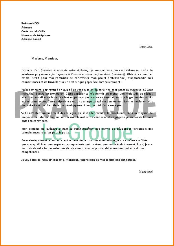 lettre de motivation vendeuse en electromenager