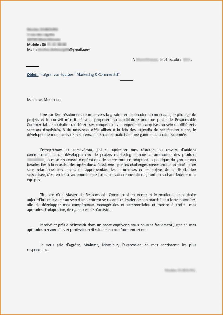 lettre de motivation assistant d u0026 39  u00e9ducation gratuite