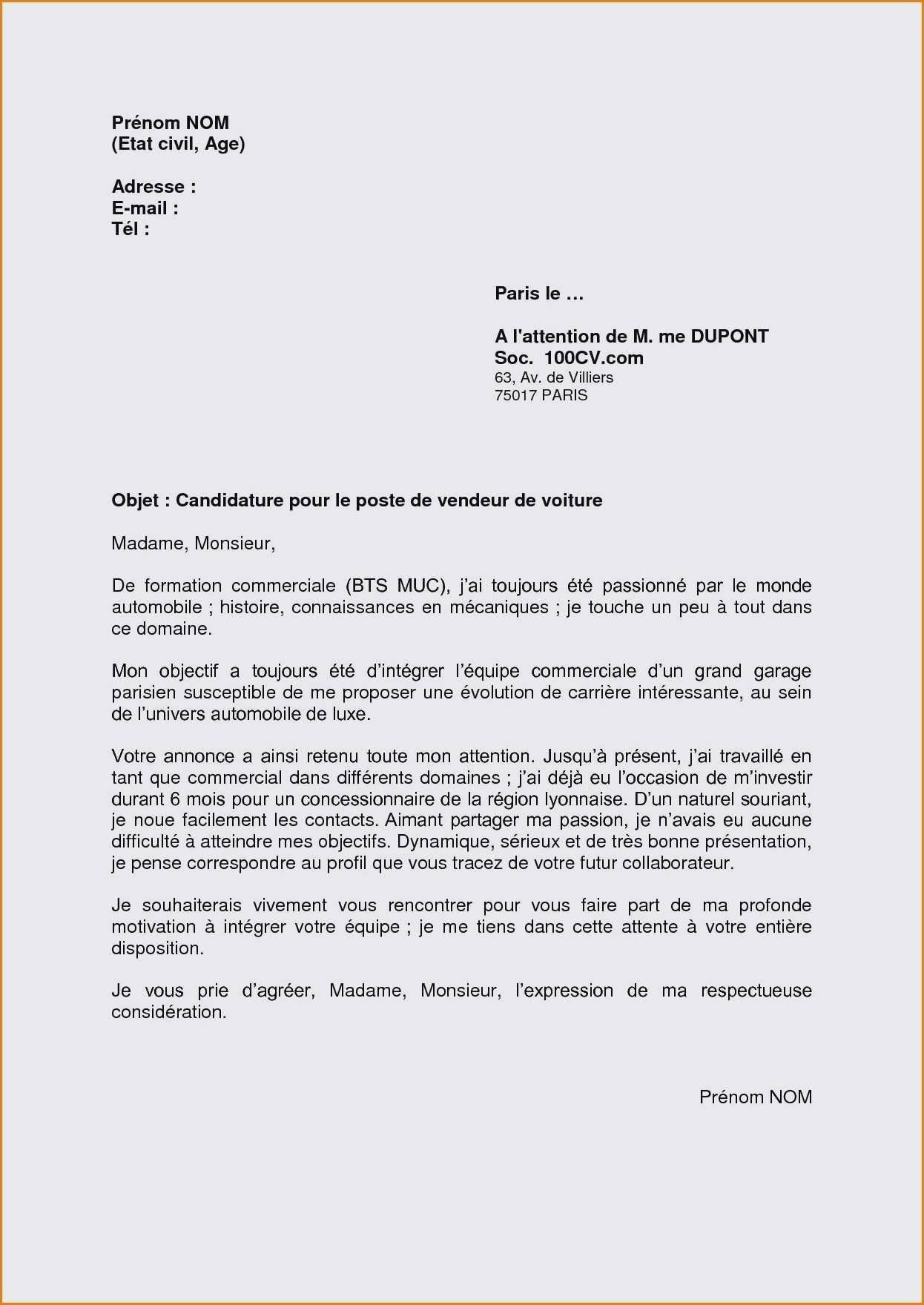 lettre de motivation banque alternance licence pro