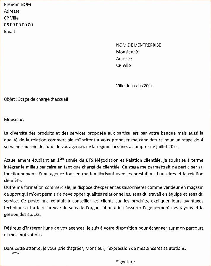 lettre de motivation licence pro ecole