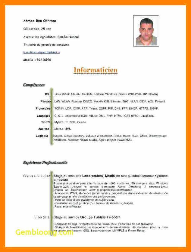 exemple de cv sans exp u00e9rience professionnelle pdf