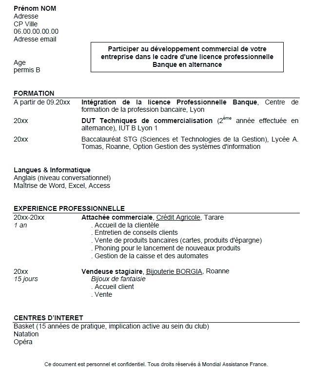 Exemple De Cv Pour Projet Professionnel
