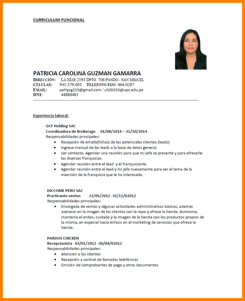 Exemplos De Curriculum Vitae Em Portugues
