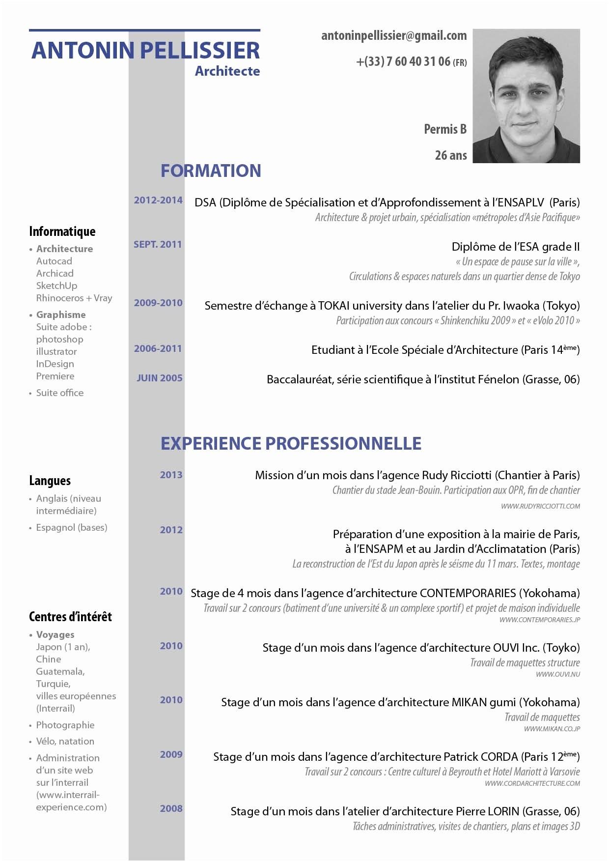 curriculum vitae francais 2017
