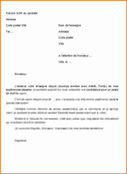 Exemple lettre de motivation caissière candidature ...