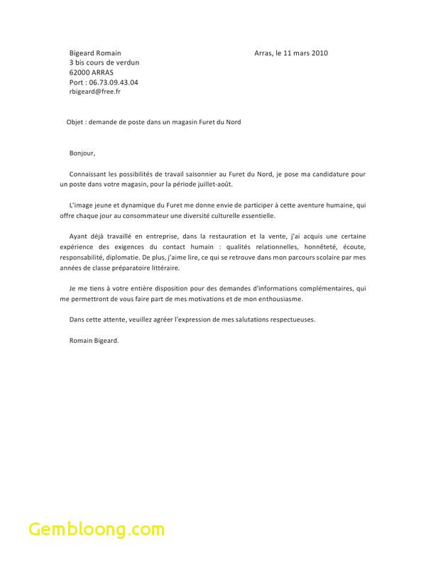 lettre de motivation pour travailler  u00e0 la mdph